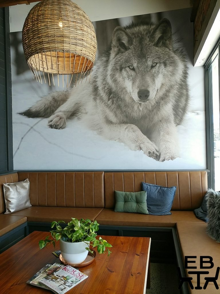 where the wolves eat lounge