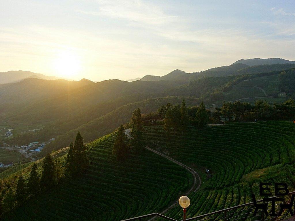 boseong sunset